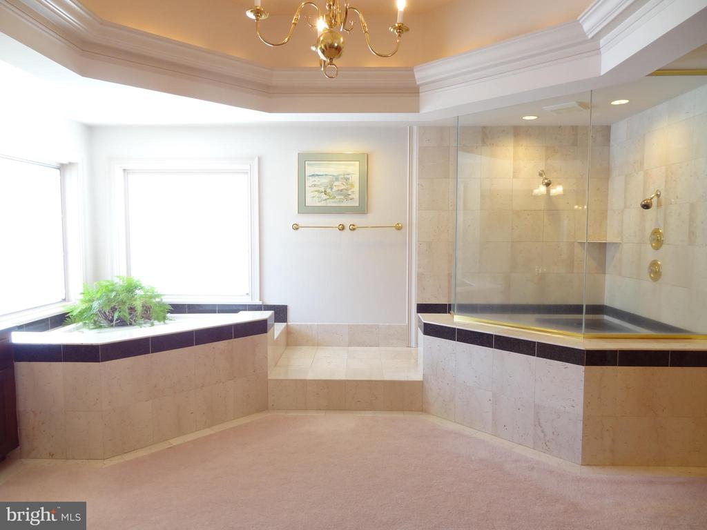 Master Bath: Private & Luxurious - 6901 CLIFTON RD, CLIFTON