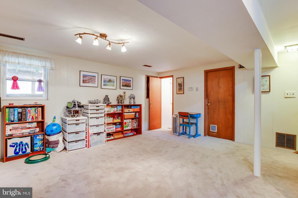 Spacious basement - 13131 BEAVER TER, ROCKVILLE