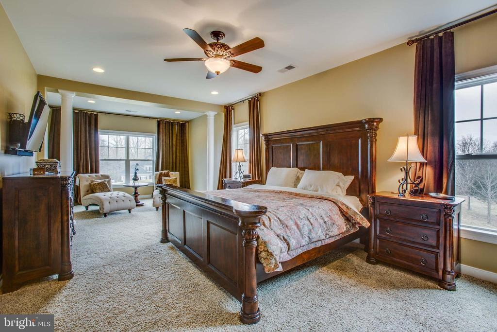 Exquisite master suite - 90 LUPINE DR, STAFFORD