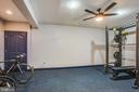Work-out room - 90 LUPINE DR, STAFFORD