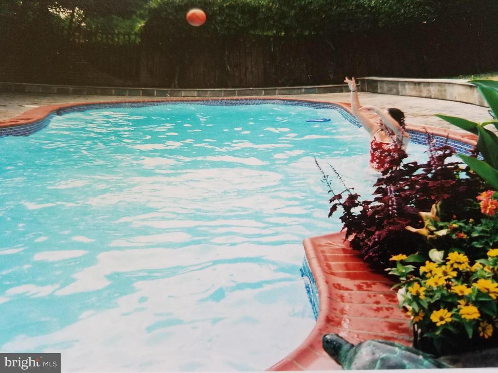 Pool - 3123 GLEN CARLYN RD, FALLS CHURCH
