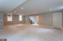 Light-filled above grade basement! - 801 N DANIEL ST, ARLINGTON