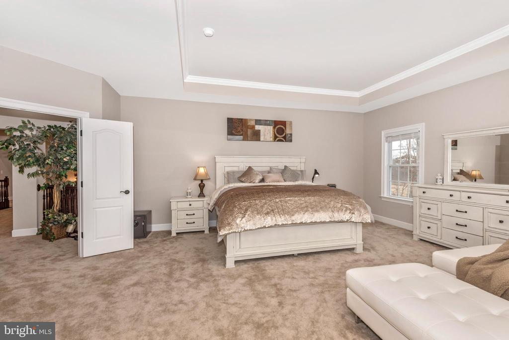 Master Bedroom tray ceilings and sitting area! - 42617 NICKELINE PL, CHANTILLY
