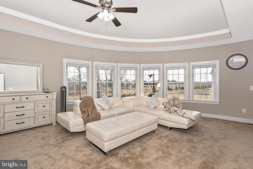 Master Bed Sitting room with curved windows! - 42617 NICKELINE PL, CHANTILLY