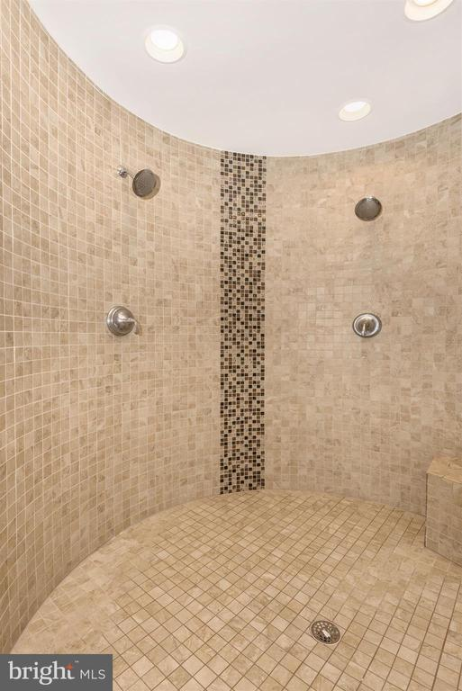Master 2 person spa heated, tiled shower! - 42617 NICKELINE PL, CHANTILLY