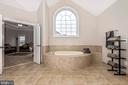 Master 2person spa Tub with atrium window! - 42617 NICKELINE PL, CHANTILLY