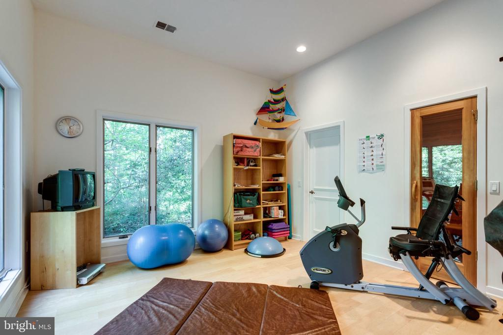 Lower Level Exercise/Gym Room - 11298 SPYGLASS COVE LANE, RESTON