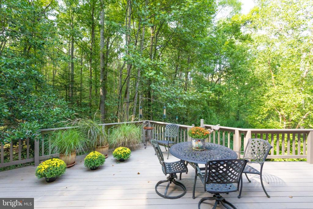 Deck Off Kitchen Eating Area - 11298 SPYGLASS COVE LANE, RESTON