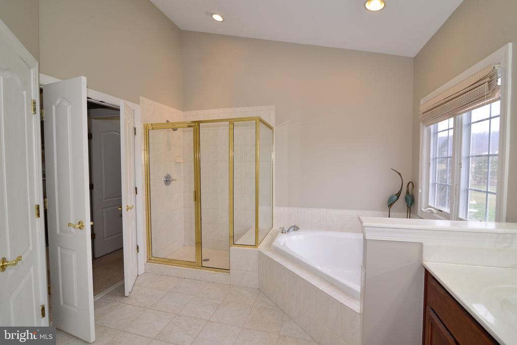 Separate Shower - 16333 LIMESTONE CT, LEESBURG