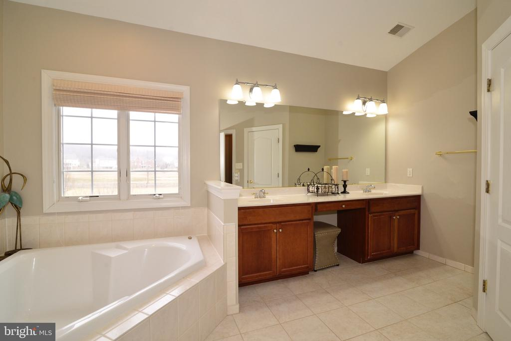Tub with a View! - 16333 LIMESTONE CT, LEESBURG