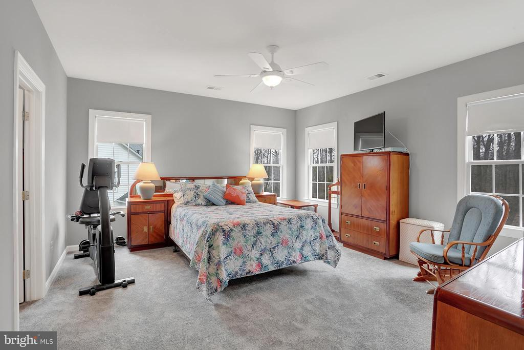 Large Master suite with walk-in closets - 13890 LEWIS MILL WAY, CHANTILLY