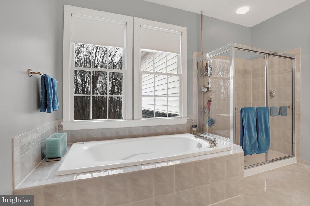 Master bath with spa tub - 13890 LEWIS MILL WAY, CHANTILLY
