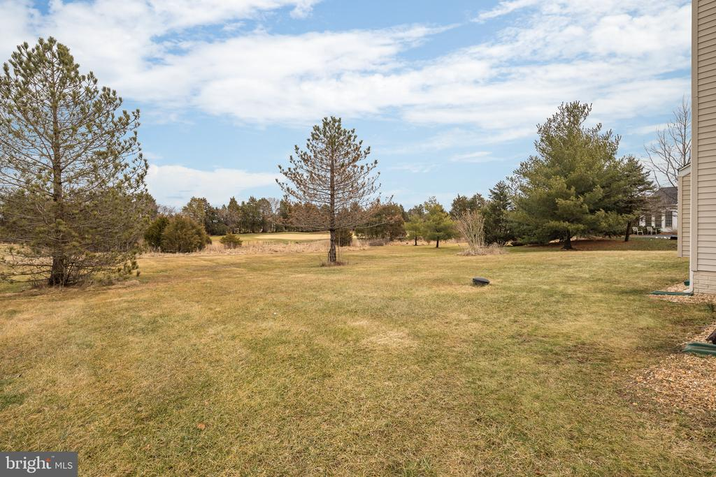 Backyard - 11108 STAINSBY CT, BRISTOW