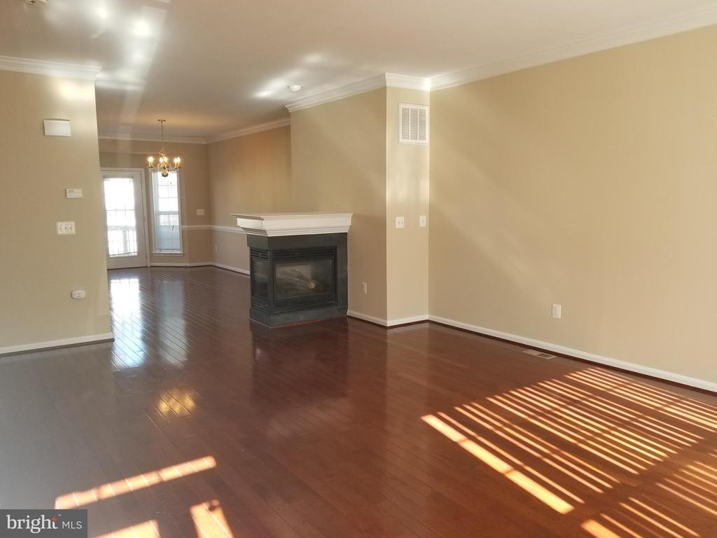 3 Sided Fireplace - 102 SANDPIPER TER, STAFFORD
