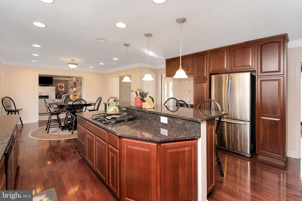 Recessed Lighting and Stainless Appliances - 20466 LITTLE LIGNUM WAY, LIGNUM