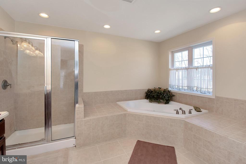 Separate Shower & Soaking Tub in Master Bath - 20466 LITTLE LIGNUM WAY, LIGNUM