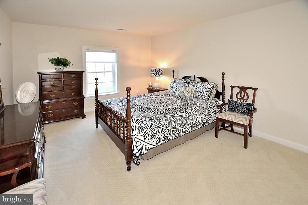 LOWER LEVEL BEDROOM #6 - 42072 MANSFIELD PARK CT, CHANTILLY