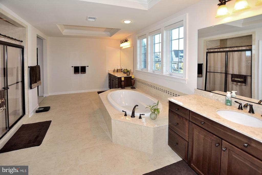 OWNERS BATH - 42072 MANSFIELD PARK CT, CHANTILLY