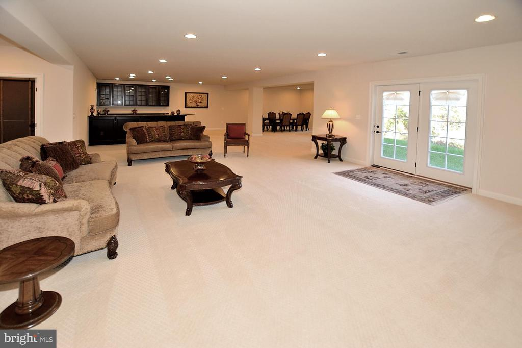 LOWER LEVEL GREAT/REC ROOM WITH WALKOUT EXIT - 42072 MANSFIELD PARK CT, CHANTILLY