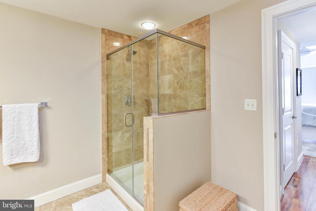Master Bath Shower - 6301 EDSALL RD #621, ALEXANDRIA