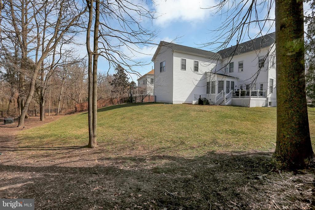 Beautiful yard backing to trees - 13890 LEWIS MILL WAY, CHANTILLY