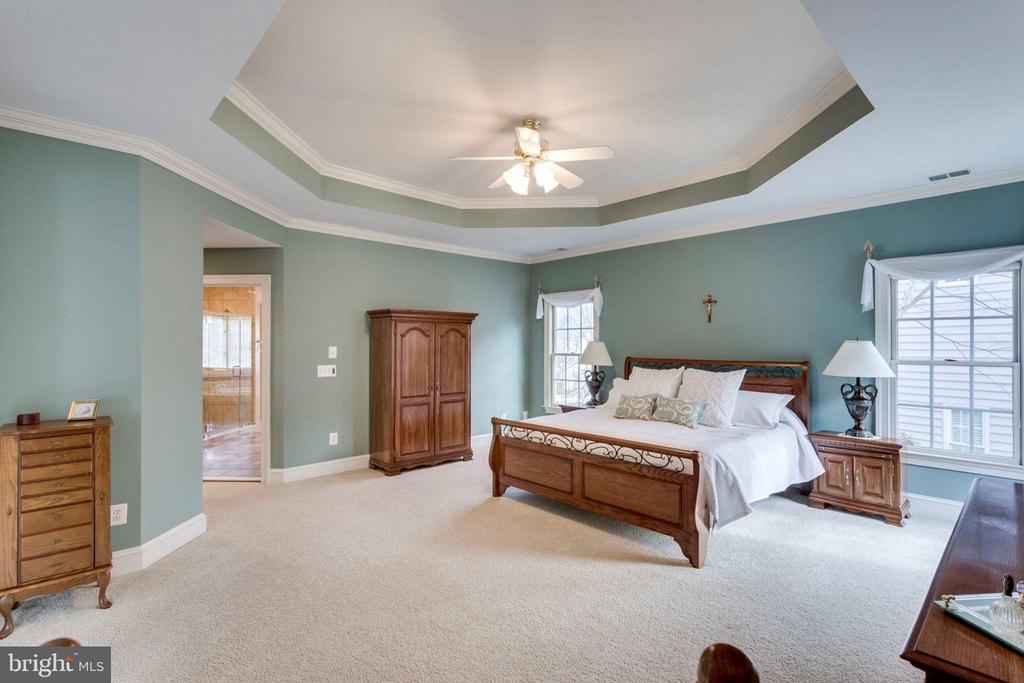 Master suite with tray ceiling - 1075 CEDAR CHASE CT, HERNDON