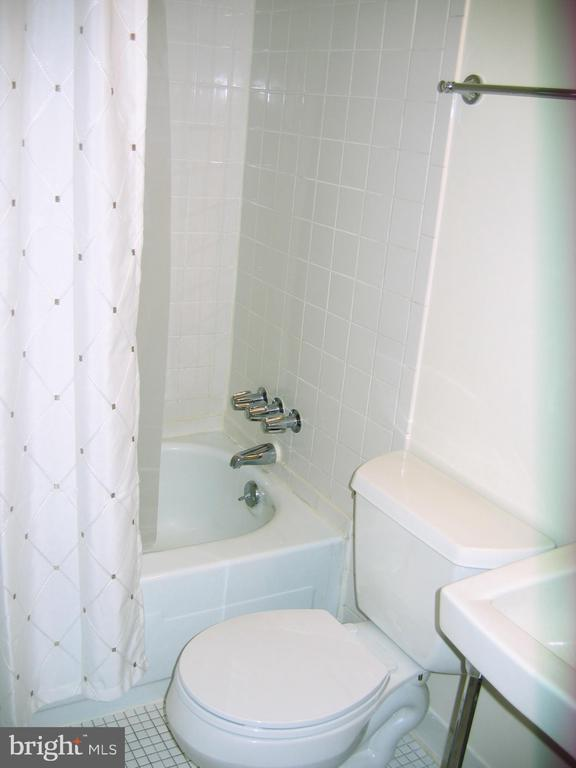 Bathroom view 1 - 125 S CLUBHOUSE DR SW #8, LEESBURG