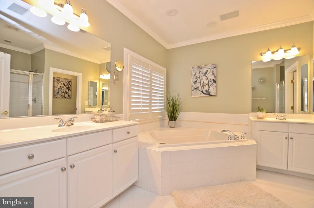 Owners  Oasis Bathroom - 22764 HIGHCREST CIR, BRAMBLETON