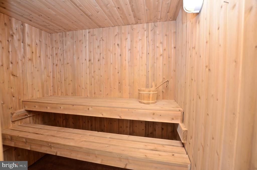 Hot Stone Sauna - 22764 HIGHCREST CIR, BRAMBLETON