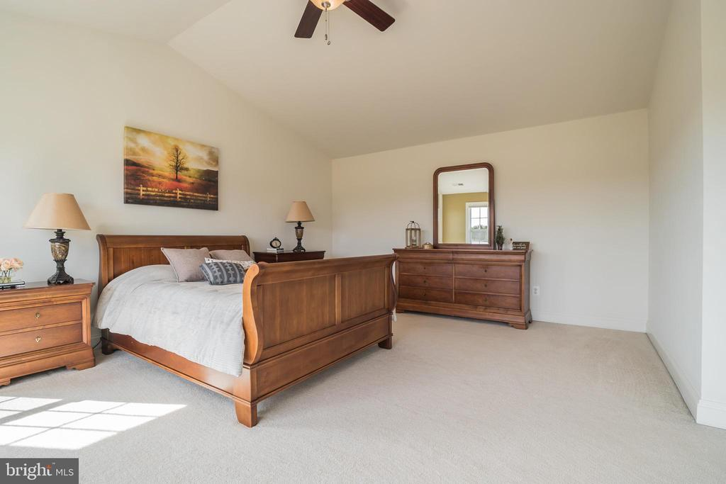 Master Bedroom with Ceiling Fan/Light - 10901 DEER MEADOW CT, NOKESVILLE