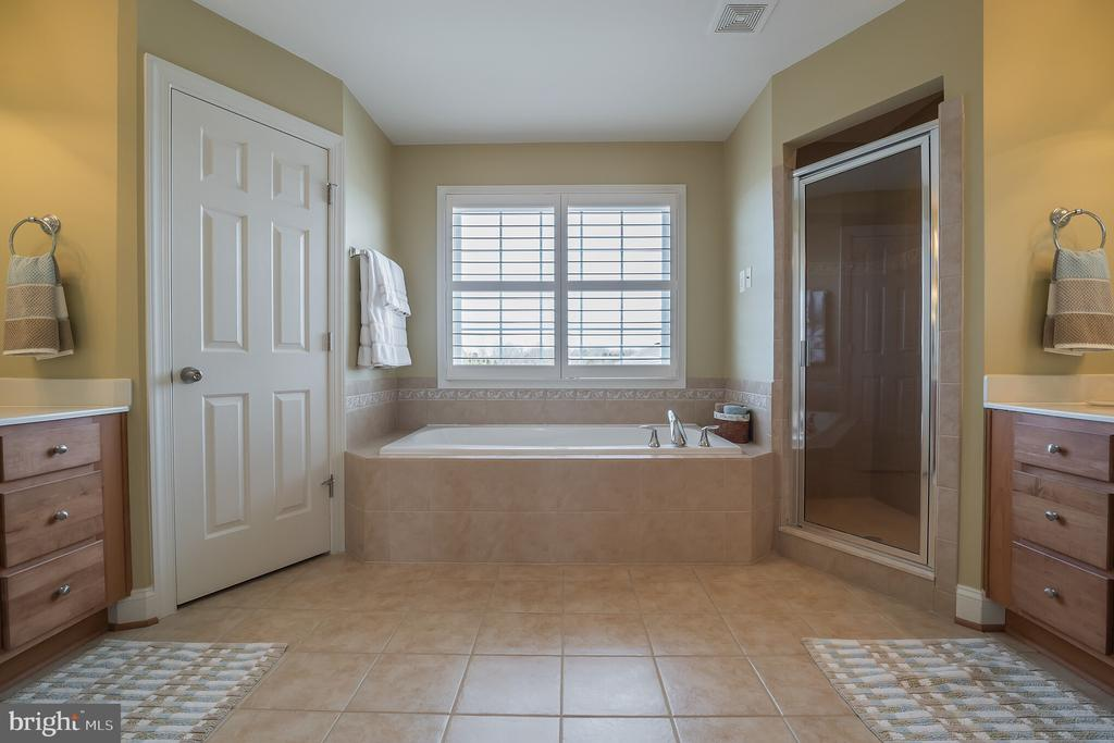Soaking Tub + Separate Shower - 10901 DEER MEADOW CT, NOKESVILLE