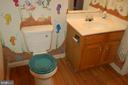Main level half bath - 7003 SOULIER LN, FREDERICKSBURG