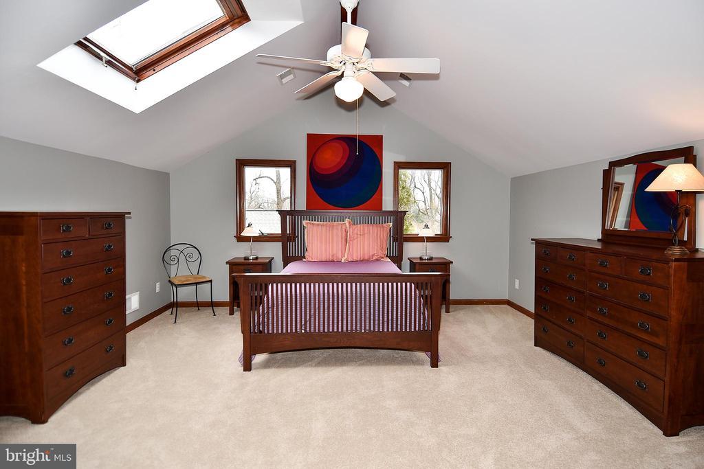 Bright Master Bedroom with Skylights! - 2259 N WAKEFIELD ST, ARLINGTON