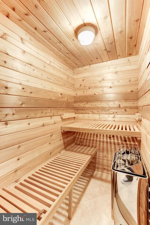 Sauna - 208 MCHENRY ST SE, VIENNA