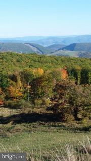 土地,用地 为 销售 在 Mount Storm, 西弗吉尼亚州 26739 美国