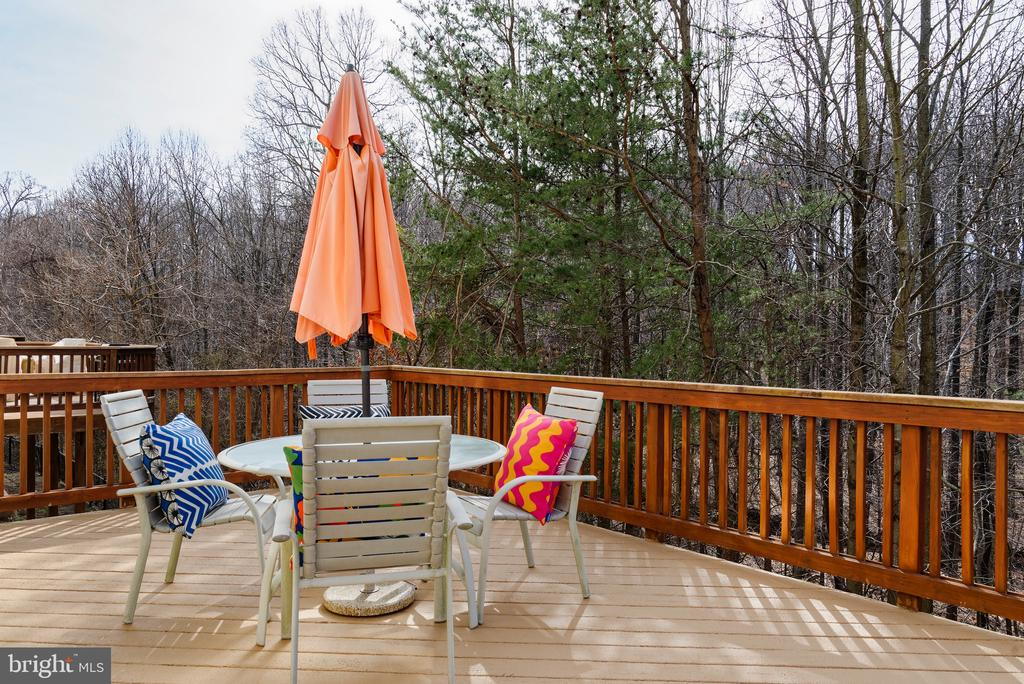 Entertain or just relax to the sounds of nature - 6857 ROLLING CREEK WAY, ALEXANDRIA