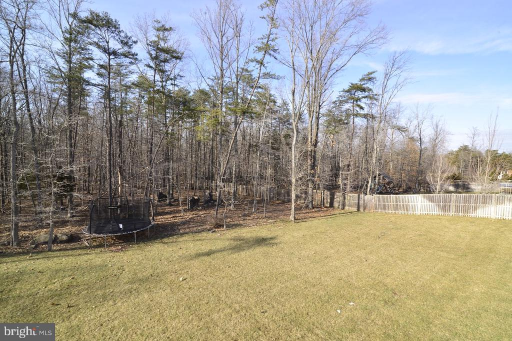 Great Wooded Lot - 22333 PASTURE ROSE PL, BROADLANDS