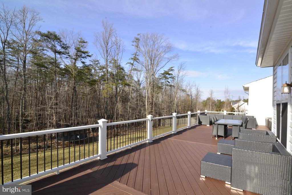 Large Composite Deck - 22333 PASTURE ROSE PL, BROADLANDS