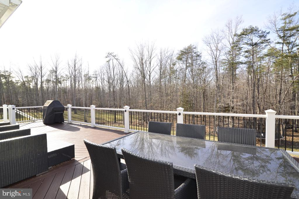 Deck View - 22333 PASTURE ROSE PL, BROADLANDS