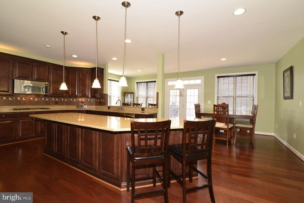 Gourmet Kitchen - 22333 PASTURE ROSE PL, BROADLANDS