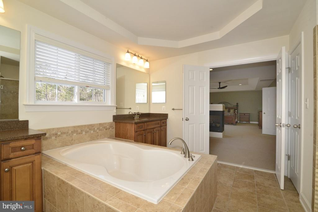 Great Soaking Tub - 22333 PASTURE ROSE PL, BROADLANDS