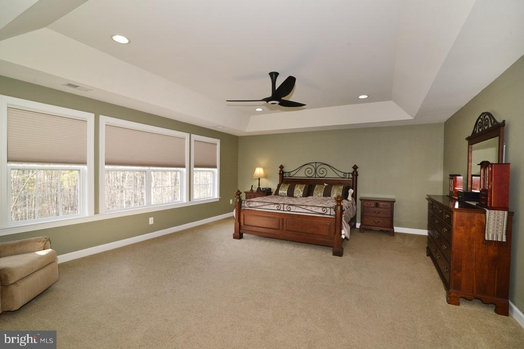 Huge Master Bedroom with Tray Ceiling - 22333 PASTURE ROSE PL, BROADLANDS