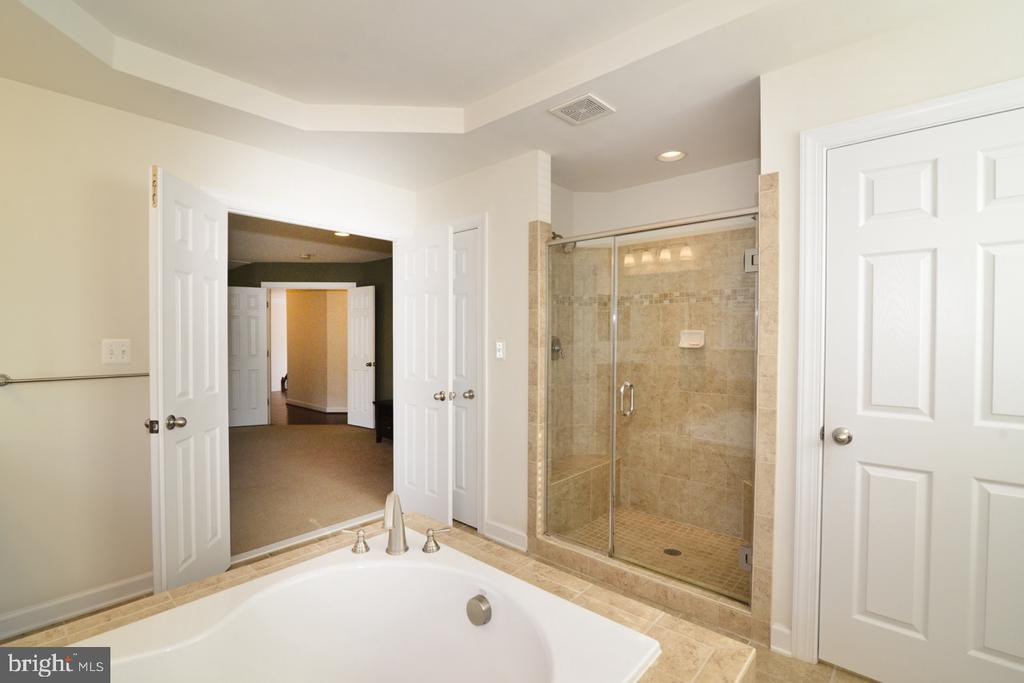 Master Shower - 22333 PASTURE ROSE PL, BROADLANDS