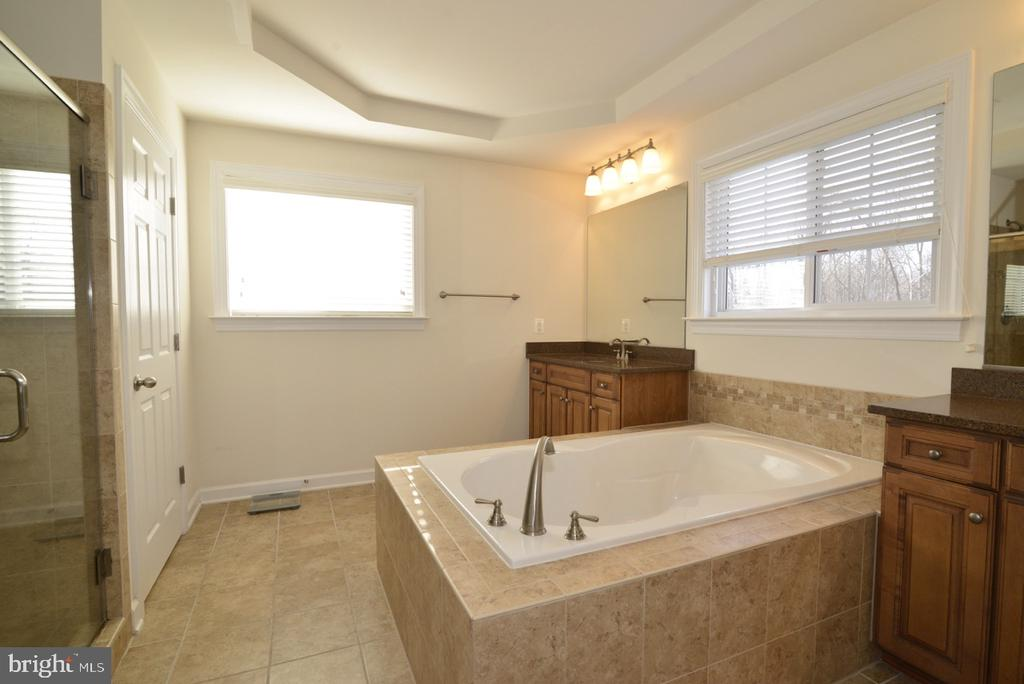 Master Bathroom - 22333 PASTURE ROSE PL, BROADLANDS