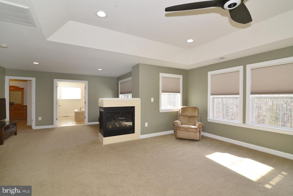 3 Sided Fireplace in the Master Bedroom - 22333 PASTURE ROSE PL, BROADLANDS