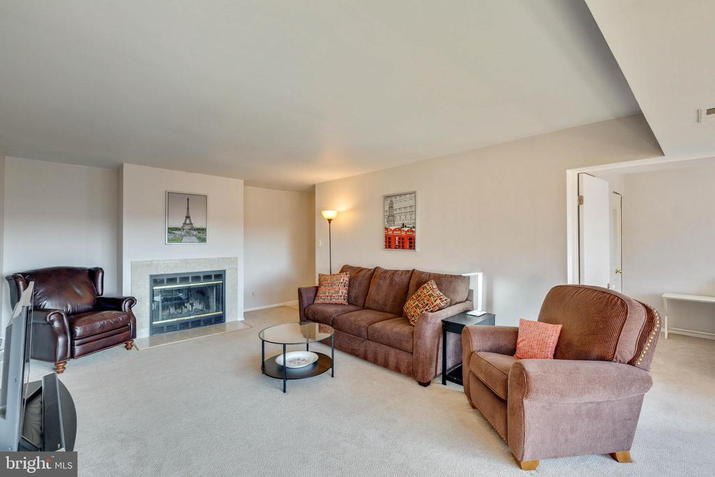 Relax by the fire - 11423 COMMONWEALTH DR #301, ROCKVILLE