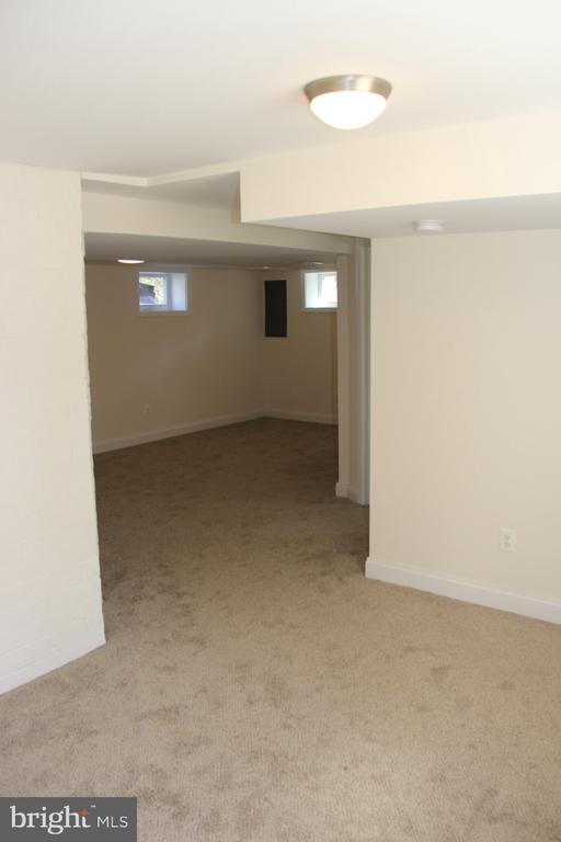 Walk-out basement with sitting area - 5201 MOUNT VERNON MEMORIAL HWY, ALEXANDRIA