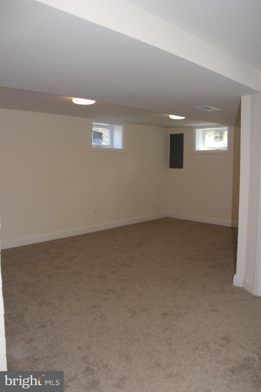 Basement rec room - 5201 MOUNT VERNON MEMORIAL HWY, ALEXANDRIA