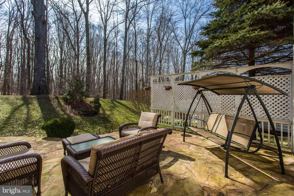 View from Stone Patio - 47297 OX BOW CIR, STERLING