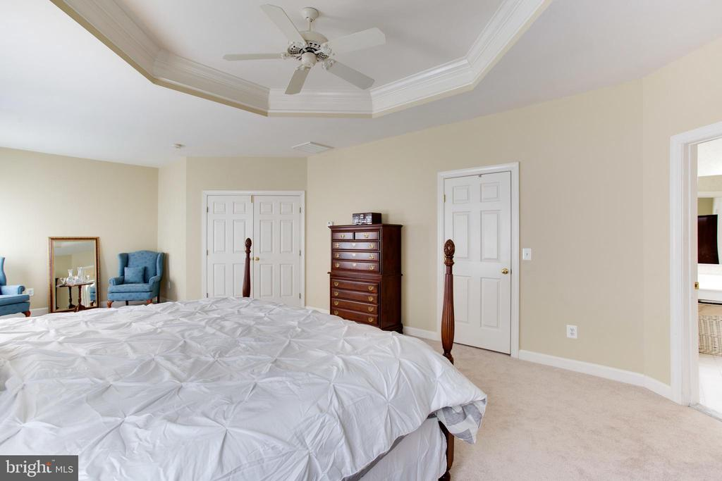 MBR w/ Tray Ceiling, New Carpet and Dual Closets - 47297 OX BOW CIR, STERLING